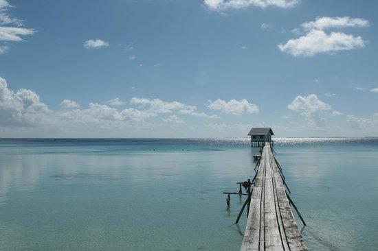 Cocoperle Lodge : Le ponton