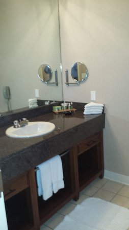 The Woodlands Resort & Conference Center : Bathroom