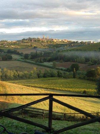 Agriturismo Poggiacolle: San Gimignano view