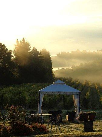 Agriturismo Poggiacolle: Morning fog