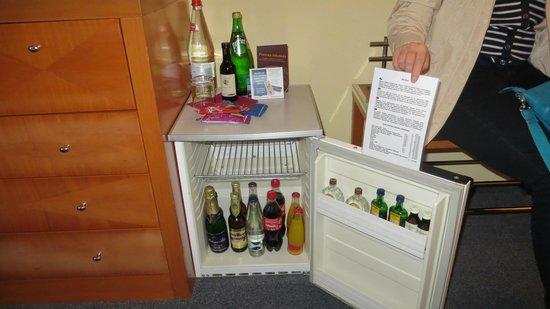 Hotel Harmony : Холодильник