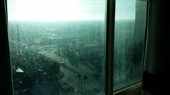Four Points by Sheraton Orlando Studio City Hotel: Windows