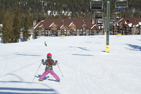 Golden, Canada: Ski or snowboard at Kicking Horse this winter