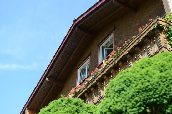 Pension Alpenrosli: Отель