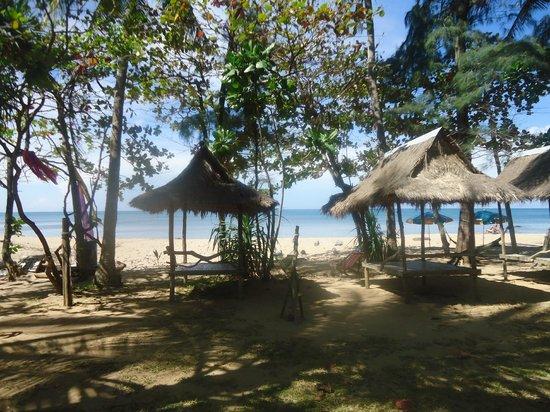 Lanta Coral Beach Resort: the beach