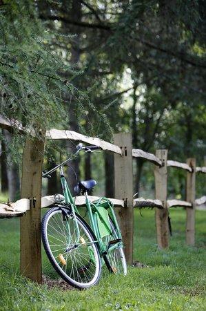 Chambre john james audubon un matin dans les bois chambre d 39 h tes loison sur cr quoise - Un matin dans les bois ...