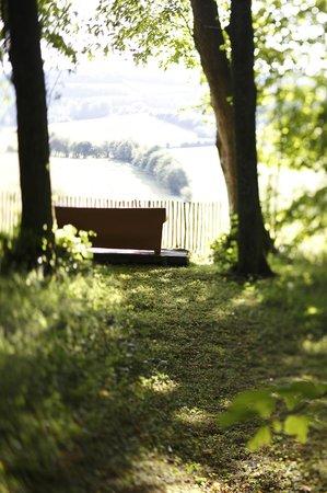 Un matin dans les bois montreuil sur mer frankrijk foto 39 s reviews en prijsvergelijking - Un matin dans les bois ...