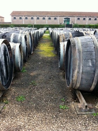 Noilly Prat : 1500 wine barrels