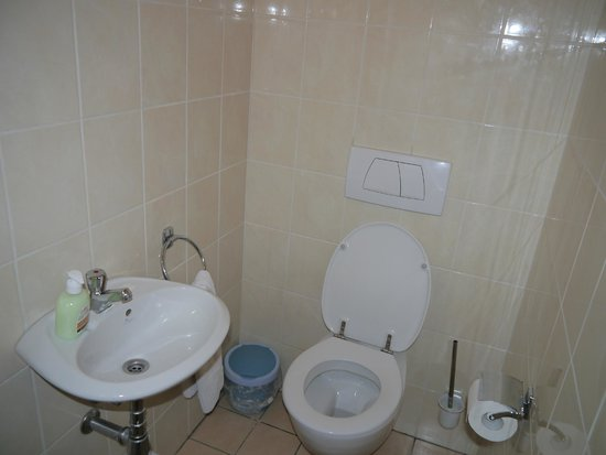 Montovani Hotel : The separate toilet