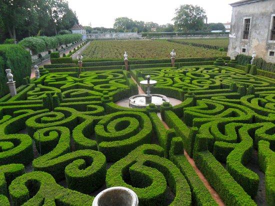 Bacalhôa Vinhos de Portugal: labirinto