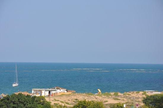 Green Life Beach Resort: Kavatsi Beach, Paradise Gardens