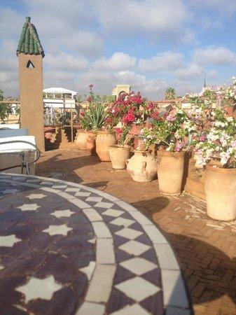 Riad Mur Akush : Sunny morning on the terrace
