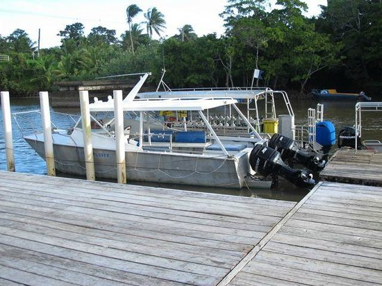 Club Oceanus: Dock with dive boats