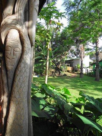 Cabanas Koro Nui: Jardín