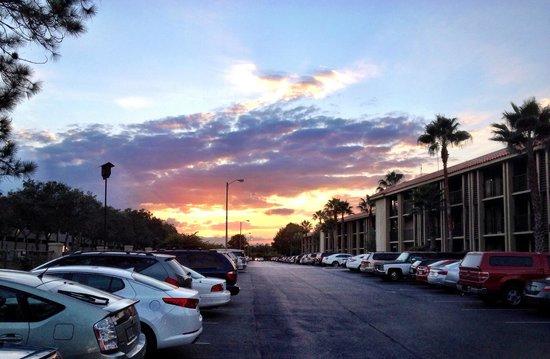 Doubletree by Hilton Orlando at SeaWorld: Tramonto dal parcheggio del resort
