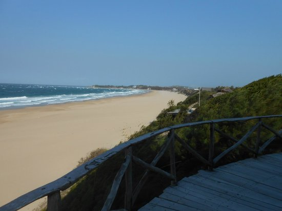 Bamboozi Beach Lodge : View from the restaurant