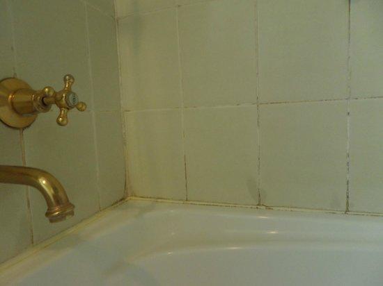Hotel Grand Chancellor Launceston: Mould in bathroom