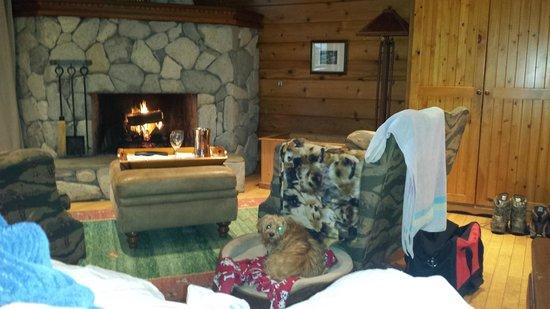 Rowena's Inn on the River : Nice wood burning fireplace