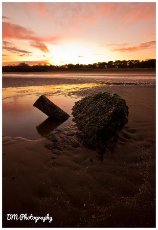 Seton Sands Holiday Park - Haven: Seton Sands at Sunrise