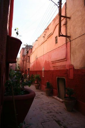 Riad Oasissime : the lane of the Riad