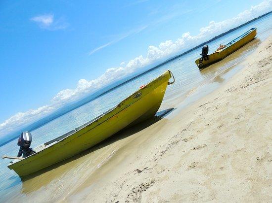 Playa Estrella : Playa de las Estrellas