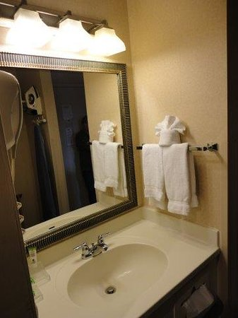 Park Inn by Radisson Harrisburg West : Bathroom
