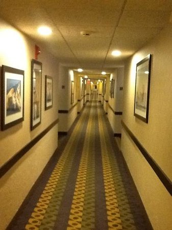 Holiday Inn Hyannis: long hallway