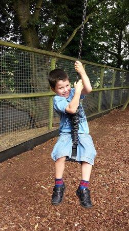 Farmyard Funworld: fun on the zip wire