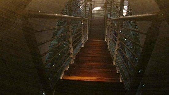 Lapostolle Residence Restaurante: The Cellar
