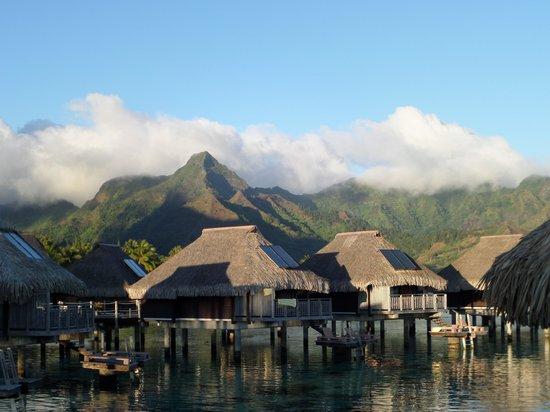 Hilton Moorea Lagoon Resort & Spa : I Love Moorea