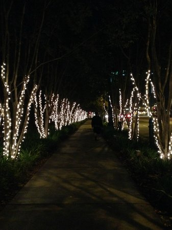 BEST WESTERN PLUS Stovall's Inn: Walk to Downtown Disney