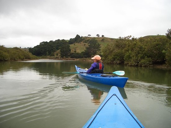 Puhoi River Canoe Hire Ltd Kayak Trips: Fantastic River Adventure kayaking for all the Family