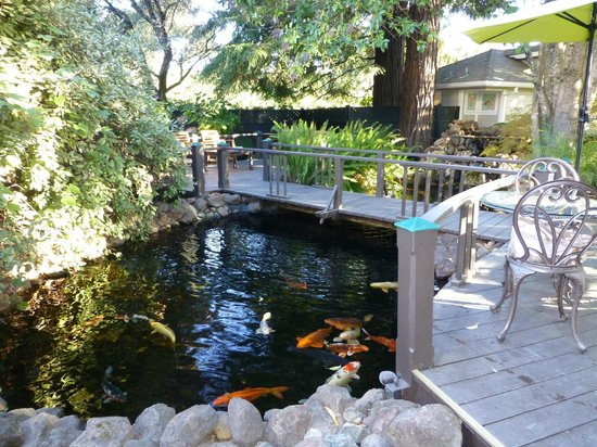 Honor Mansion, A Wine Country Resort: You can have breakfast or just relax by the fish pond