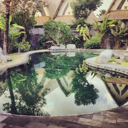 Villa Seminyak Estate & Spa: pool