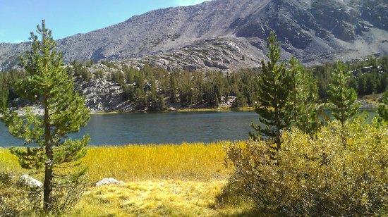 Mountainback at Mammoth: 2