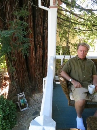 Inn St Helena : swinging under the redwood