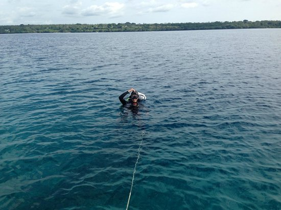 Aore Adventure Sports & Lodge: off diving