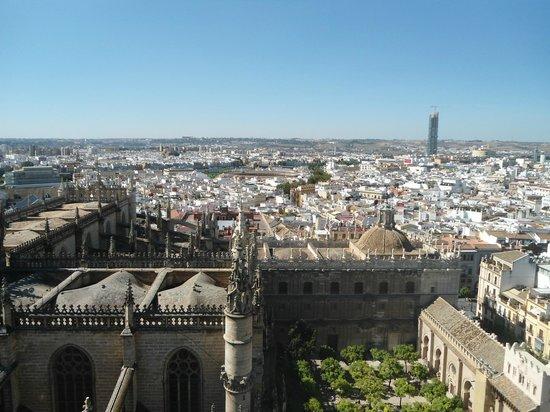 """Novotel Sevilla: Vista da torre """"Giralda"""" da catedral"""