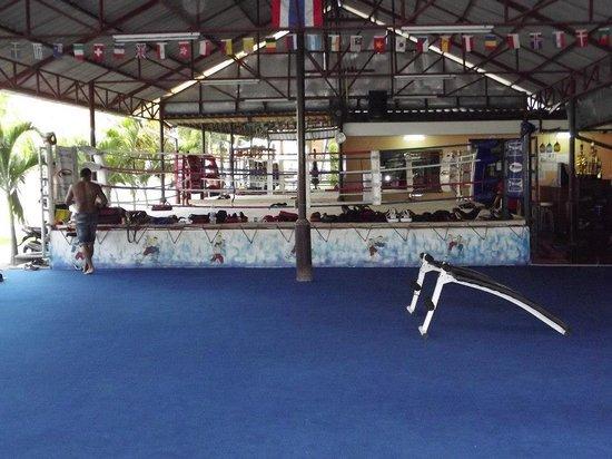 Phuket Dragon Muay Thai: Estrutura