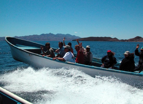Baja AirVentures Las Animas Wilderness Lodge: Scenic boatride on the way to dig for clams...dinner that night was amazing!