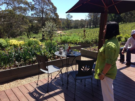 Green Olive at Red Hill: Melbourne cup day, country style