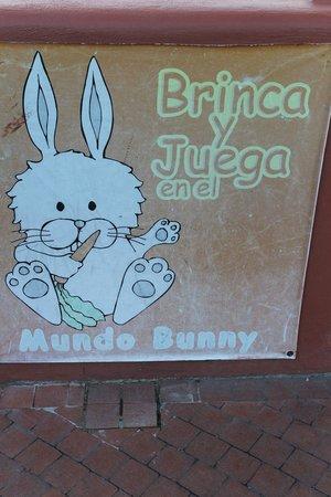 Hosteria Cabanas del Lago: bunnies