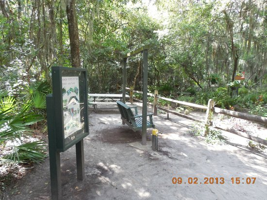 Jekyll Island Campground: Bird sanctuary in the campground