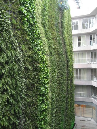 Pennsylvania Suites: Living wall
