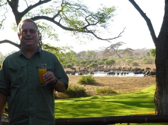 Elephant Valley Lodge : Breakfast with Buffalo