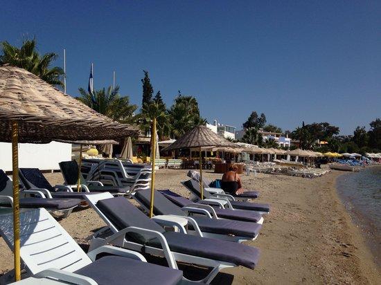 Bitez Beach: Not nice sand