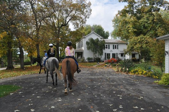 First Farm Inn Horseback Riding : afternoon ride