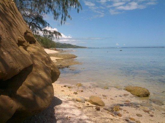 Beach Cocomo: Our frontyard