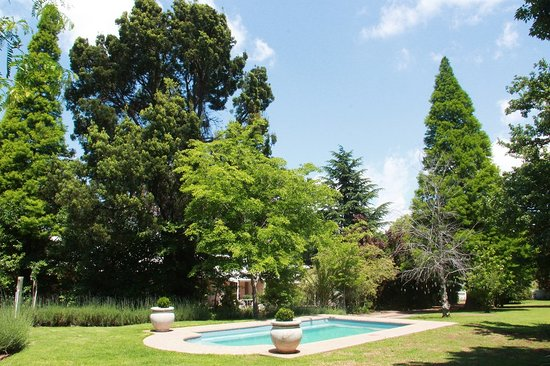 Under Elm Trees Guest House : Guesthouse view from pool