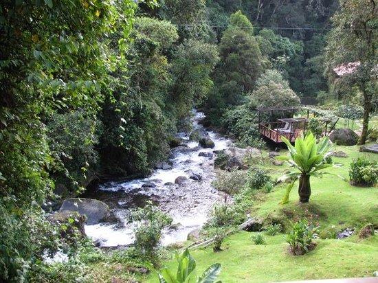 Trogon Lodge San Gerardo de Dota: The river runs through
